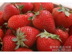 供应水果3